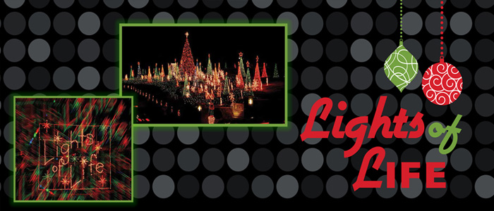 Christmas and Holiday Lights at Life University