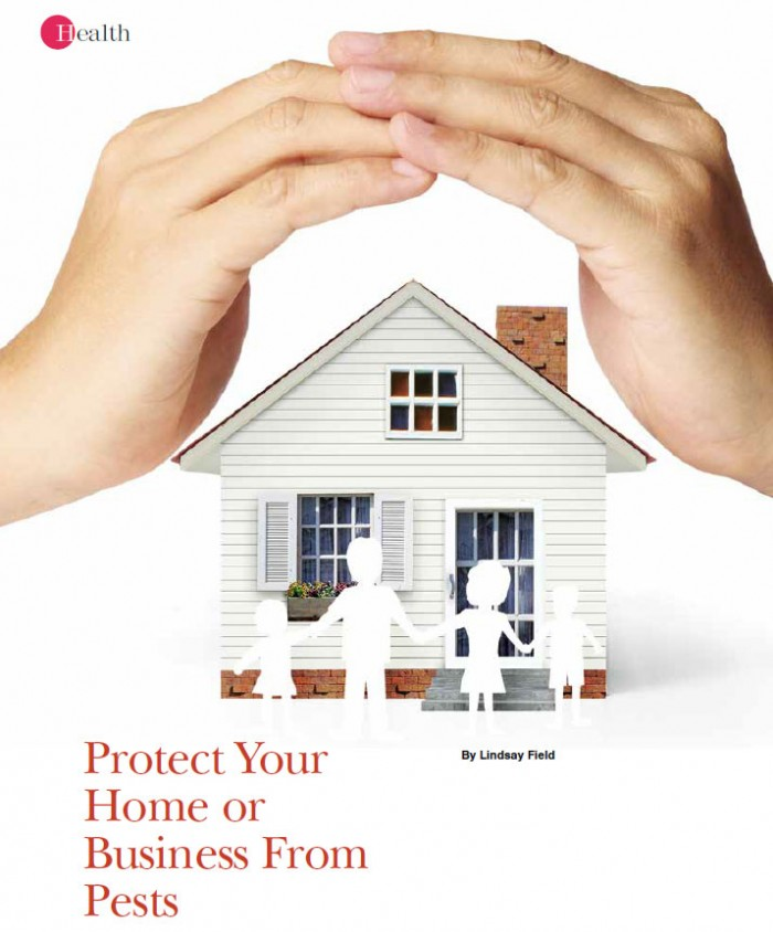 protect-home-from-pests