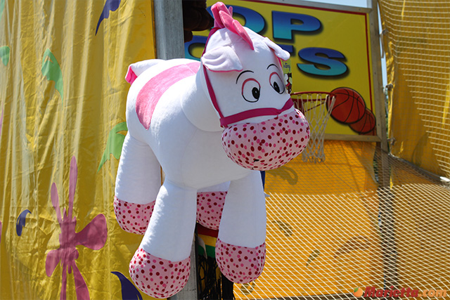 yaarab-shrine-circus-pony